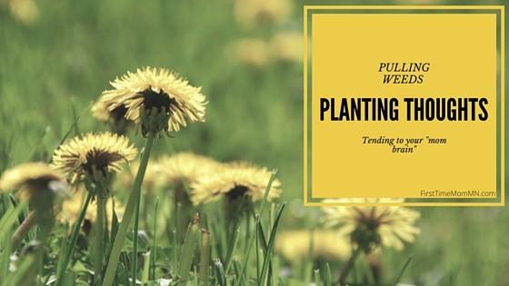Pulling Weeds and Planting Thoughts