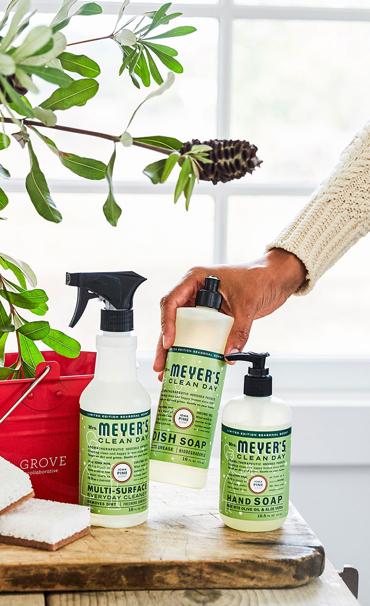 Sometimes the Grove Collaborative cleaning caddy is all one needs for Christmas