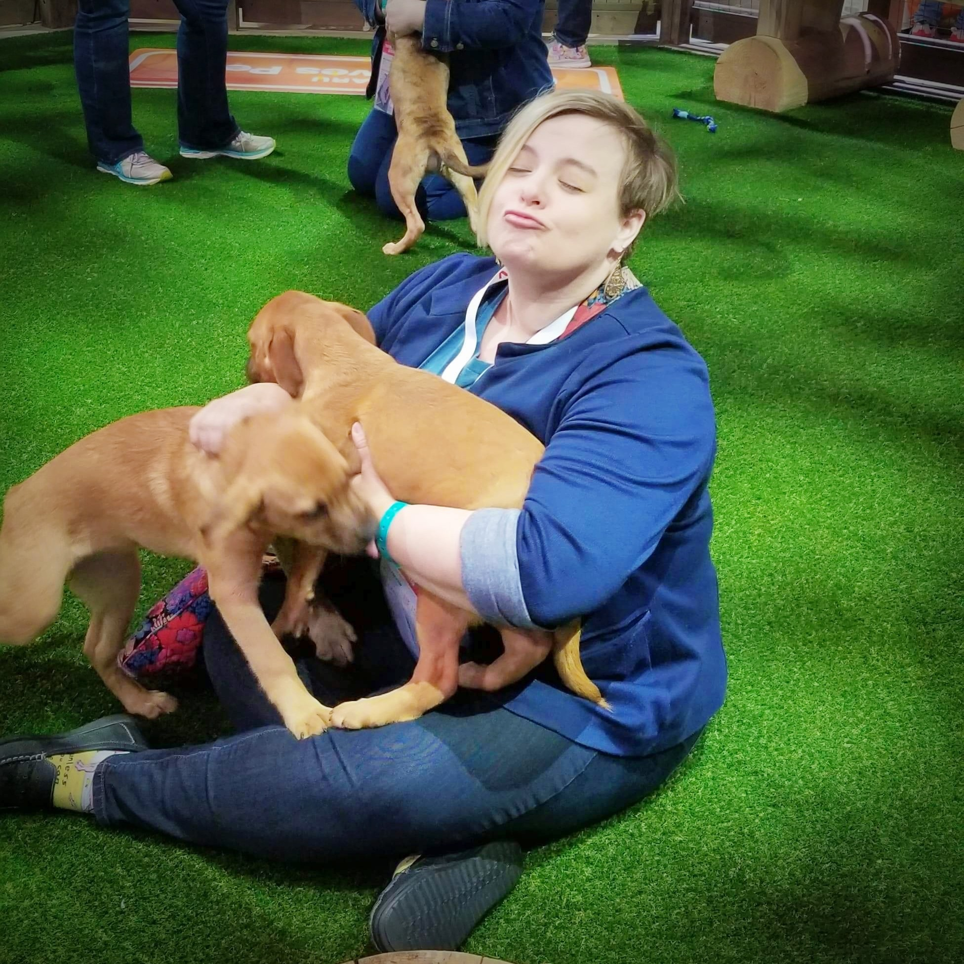 Subaru loves pets at the Chicago Auto Show